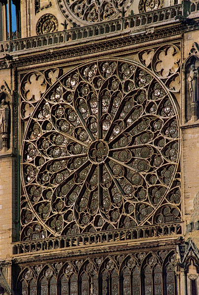 The Rose Window On South Facade Of Notre Dame