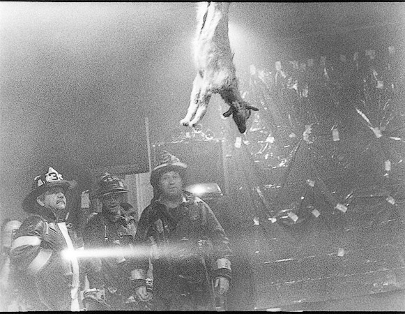 Boston Firemen In The Aftermath Of A Performance By Joe